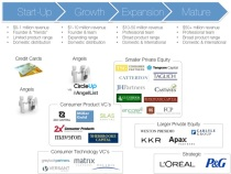 Consumer Products Investment Landscape